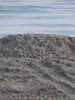 ventimiglia spiaggia